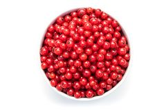 red currant in a white bowl on a white isolated background royalty free stock image