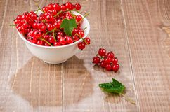 Red currant in a white plate on a wooden background/red currant in a white plate on a wooden background. selective focus. Red currant in a white plate on a stock image