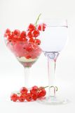 Red-currant wineglass still-life. Red currant in the wineglass on white background Stock Image