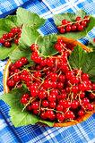 Red currant in a wooden bowl Royalty Free Stock Photography