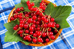 Red currant in a wooden bowl Royalty Free Stock Photo