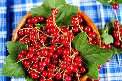 Red currant in a wooden bowl Stock Photo