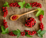 Red currant in wooden plate Stock Photography