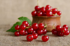 Red currant in wooden plate Royalty Free Stock Image