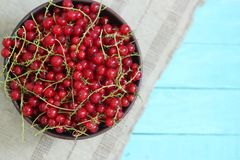 Red currant on wooden rustic background. Top view stock photography