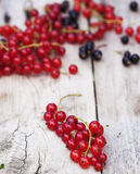 Red currant on wooden table. Red and black currant on wooden table Royalty Free Stock Images