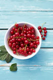 Red currant on a wooden table Stock Image