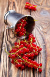 Red currant. On the wooden table,stock photo stock photos