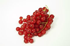 Red currants. On white background Royalty Free Stock Photography