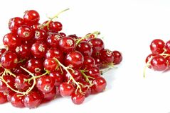 Red currants Royalty Free Stock Photography