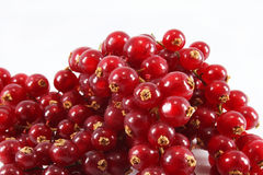 Red currants. Closeup on a white background Stock Images