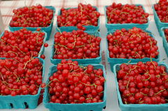 Red Currants. Bunches of red currants for sale in the outdoor market Stock Photos