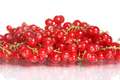 Red currants. Food and nutrition at spring and summer Royalty Free Stock Photos