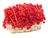 Red currants in a basket Royalty Free Stock Photography