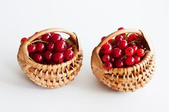 Red currants in basket Stock Photo