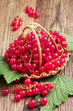 Red currants in basket on table Stock Images