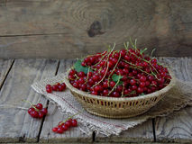 Red currants in a basket. On a wooden background royalty free stock images