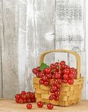 Red Currants on a Basket Royalty Free Stock Image