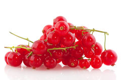 Red currants berries. Fruit isolated over white Stock Photo