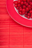 Red currants berries on a tablecloth Royalty Free Stock Photos