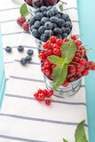 Red currants and blueberries in small metal buckets Royalty Free Stock Images