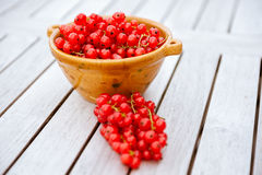 Red Currants in a Bowl Stock Images