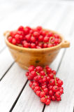 Red Currants in a Bowl Royalty Free Stock Photos