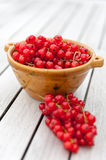 Red Currants in a Bowl Royalty Free Stock Images