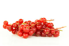 Red currants. A bunch of fresh red currants stock photo