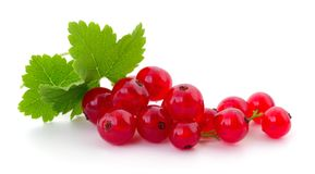 Red currants . Close up of red currants on white Royalty Free Stock Image