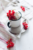 Red currants and cottage cheese Stock Photos