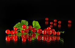 Red currants on a dark background. Juicy and ripe red currant berries on a dark background Royalty Free Stock Photography