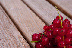 Red currants on a dark background. Stock Photos