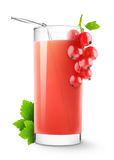 Red currants drink. Isolated glass. Red currants drink and fresh berries isolated on white background Stock Photo