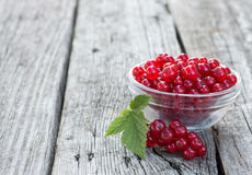 Red Currants. Fresh ripe organic red currants with green leaf in a glass bowl on the rustic wooden table. Closeup with copy space Stock Images