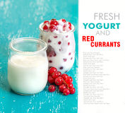 Red currants and fresh yogurt in a jar Stock Images