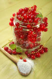 Red currants in glass jar Stock Images