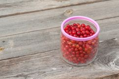 Red currants in glass jarl Stock Photography