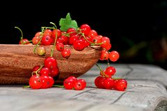 Red currants in wooden bowl on wood in sunlight Royalty Free Stock Photography
