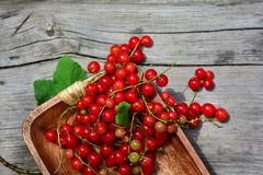 Red currants in wooden bowl on wood Stock Photography