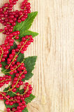 Red currants and green leaves Stock Photos