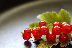 Red currants on a heavily blurred  background Stock Photo