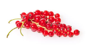 Red currants isolated on white Stock Photography