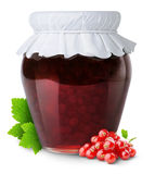Red currants jam Stock Photography
