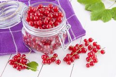 Red currants in a jar Royalty Free Stock Photo
