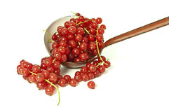 Red Currants and a ladle. Red curants in a ladle on white background Royalty Free Stock Images