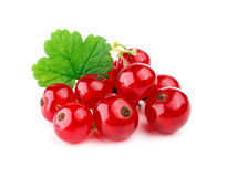 Red currants with leaf Royalty Free Stock Image