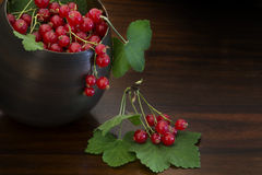 Red currants and leaves in a bowl on dark brown wood Stock Image