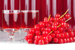 Red currants and liqueur in a glass Stock Photos