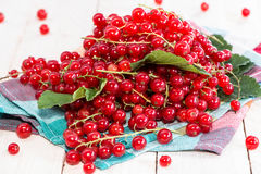 Red Currants (macro shot) Royalty Free Stock Photo